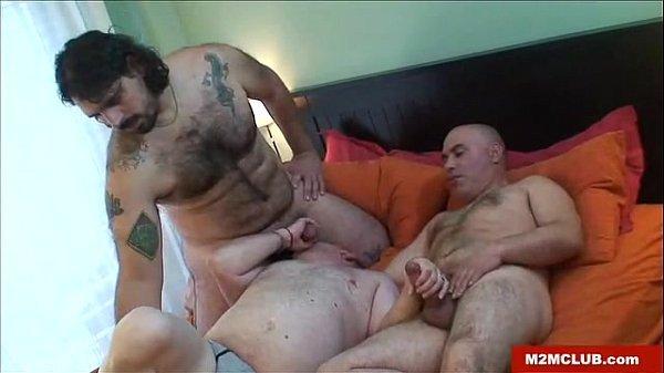 Manage de três ursos peludos gays